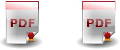 duplicato informatico